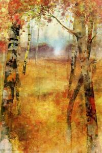 Splashes of Autumn by Ken Roko