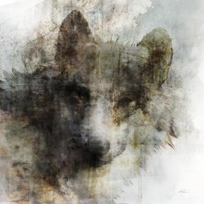 Fierce White Wolf Fantasy Art