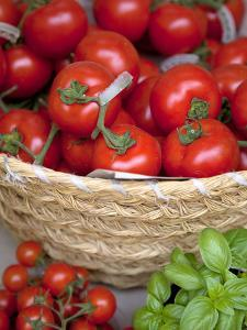 Sicily, Italy, Western Europe, Tomatoes and Basil, Staple Items in the Southern Italian Kitchen by Ken Scicluna