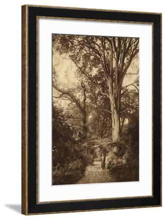 Ken Wood, Path Through Woods--Framed Photographic Print