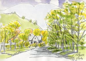 English Countryside by Kenji Fujimura