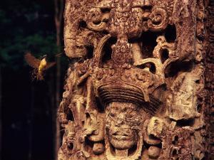 Bird and Mayan Monument by Kenneth Garrett