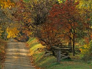 Fall Colors, View Of Country Land, Loudoun County, Virginia, USA by Kenneth Garrett
