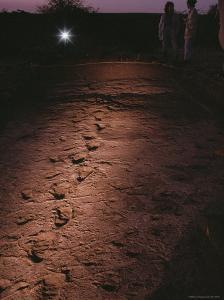 Fossilized Tracks Left by Primates 3.6 Million Years Ago by Kenneth Garrett