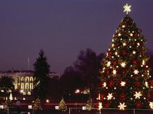 Night View of the Lighted Tree in Front of the White House by Kenneth Garrett