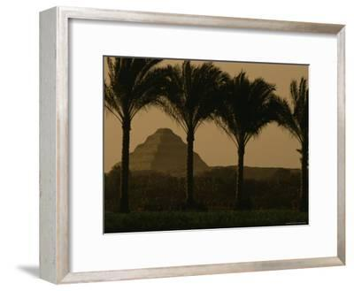 Palm Trees Frame a View of the Step Pyramid of Djoser