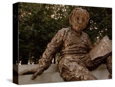 Portrait of the Einstein Memorial, Washington, D.C.