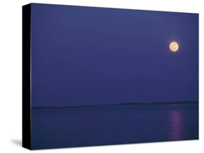 Purple Sky and Moon over a Body of Water