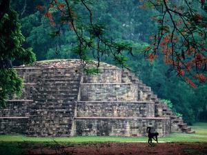Royal Tomb, Maya, Copan, Honduras by Kenneth Garrett