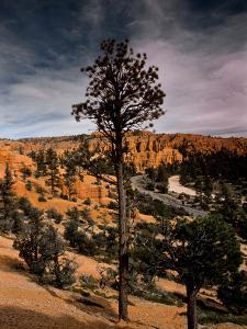 A Arid Valley in the Region of Bryce Canyon by Kenneth Ginn