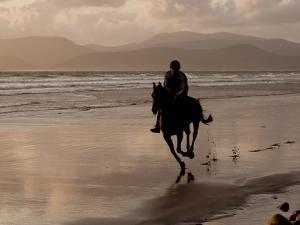 A Rider Exercises a Horse in the Evening on the Beach at Rosbehy Point by Kenneth Ginn