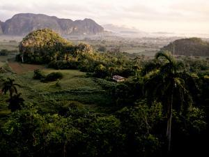 Early Morning Landscape of Cuba's Tobacco Region by Kenneth Ginn