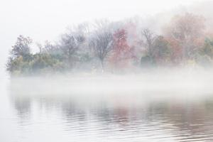 Fall Leaves Peek Through the Morning Fog on the Occoquan River, Near the Potomac River by Kent Kobersteen