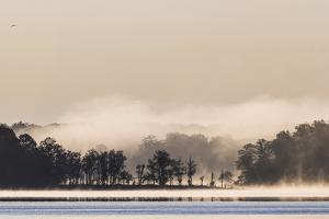 Heavy Fog at Sunrise over the Occoquan River by Kent Kobersteen