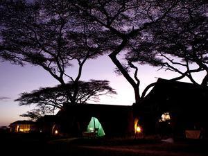 Predawn at a Tent Camp at the Serengeti Plain in Tanzania by Kent Kobersteen