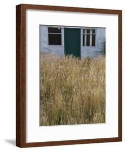 Tall Grasses Growing Up to the Door and Windows of a Building by Kent Kobersteen