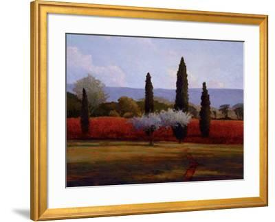 St. Saturnin Olives