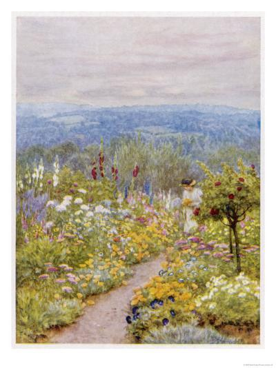 Kentish Garden, a Woman Picks Flowers from Large Herbaceous Borders in a Typical English Garden--Giclee Print