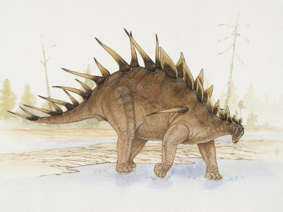 Kentrosaurus Dinosaur Standing in Water Photographic Print by | Art com