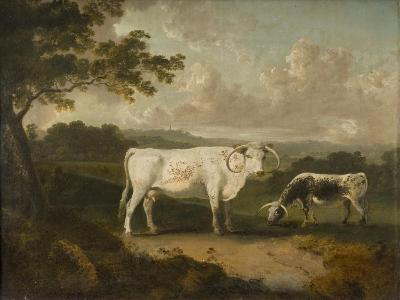 Kenwood, Lord Mansfield's Pedigree Cattle, 1797-Julius Caesar Ibbetson-Giclee Print