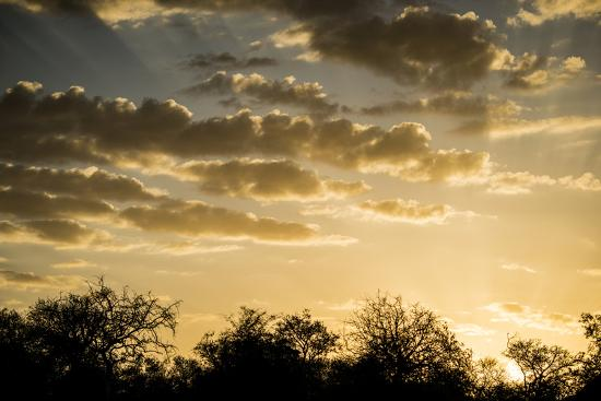 Kenya, Chyulu Hills, Old Donyo Wuas Lodge, Mbirikani, Sunrise-Alison Jones-Photographic Print