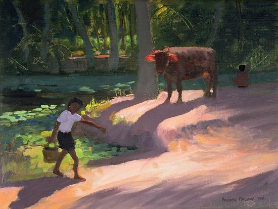 Kerala Backwaters, India, 1996-Andrew Macara-Giclee Print