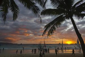 Beach with Palm Trees at Sunset, Boracay Island, Aklan Province, Philippines by Keren Su