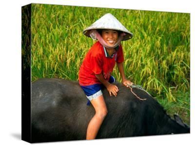 Boy Riding Water Buffalo, Mekong Delta, Vietnam
