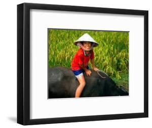 Boy Riding Water Buffalo, Mekong Delta, Vietnam by Keren Su