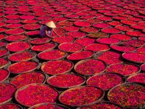 Candy Drying in Baskets, Vietnam by Keren Su