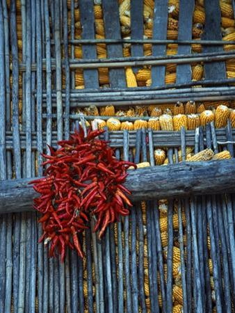 Chili Peppers and Corn Drying by Keren Su