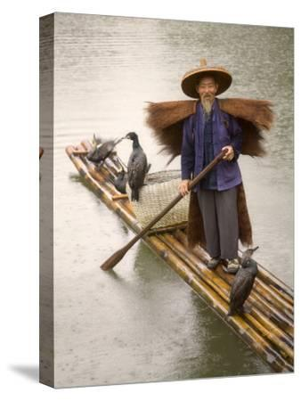 China, Guangxi Province, Fisherman Wearing Straw Raincoat with Cormorants on Bamboo Raft on the Li