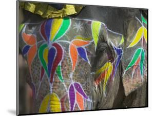 Elephant Decorated with Colorful Painting, Jaipur, Rajasthan, India by Keren Su