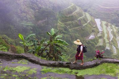 Igorot Woman, Rice Terraces, Agriculture, Philippine Cordilleras, Philippines