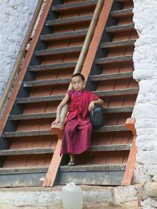 Monks in Punakha Dzong, Punakha, Bhutan by Keren Su