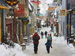 Old Houses Along the Street, Quebec City, Canada by Keren Su