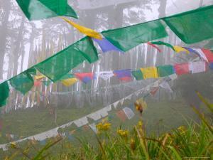 Praying Flags in the Dochula Pass, Between Wangdi and Thimphu, Bhutan by Keren Su