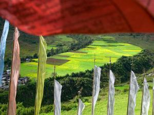 Praying Flags with Village and Farmlands at Pepe La Pass, Phobjikha Valley, Gangtey, Bhutan by Keren Su
