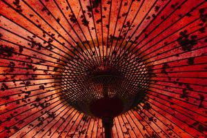 Red umbrella, Taiwan by Keren Su
