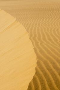 Sand Dunes, Medanos de Coro NP, Near Coro, Falcon State, Venezuela by Keren Su