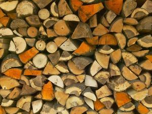 Stacked Firewood, Lithuania by Keren Su