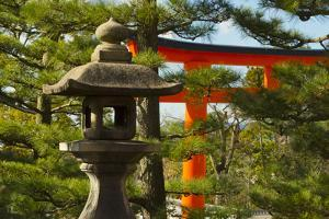 Stone lantern and Torii gate in Fushimi Inari Shrine, Kyoto, Japan by Keren Su