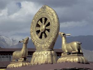 Symbol of Reincarnation at the Jokhang, Lhasa, Tibet by Keren Su
