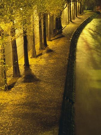 Trees Along the Seine River at Night by Keren Su