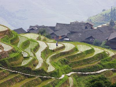 Village Houses with Rice Terraces in the Mountain, Longsheng, Guangxi, China by Keren Su