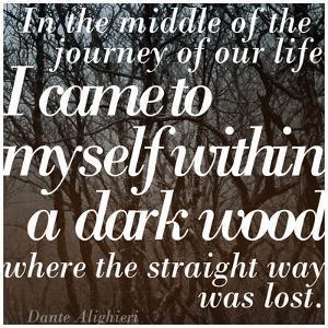 Within a Dark Wood by Keren Su