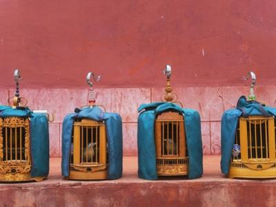 Wooden Bird Cages Against Ancient City Wall by Keren Su