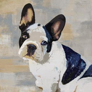 French Bulldog by Keri Rodgers