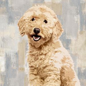 Poodle by Keri Rodgers