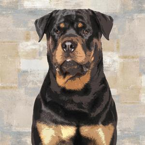Rottweiler by Keri Rodgers